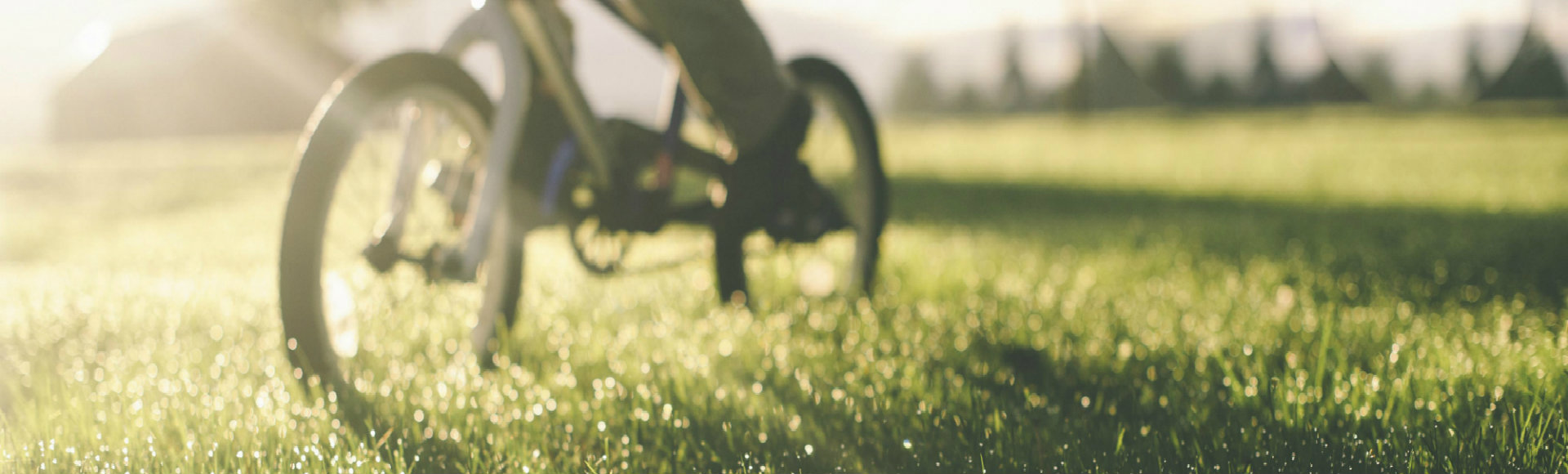 residential bike on grass 1920x580