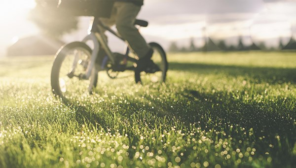 residential bike on grass 900x500