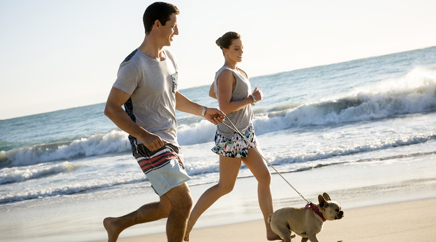 Amberton couple running with dog on beach 900x500
