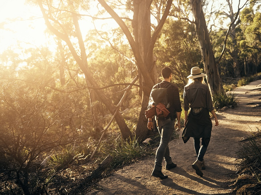 couple walking down a hiking track